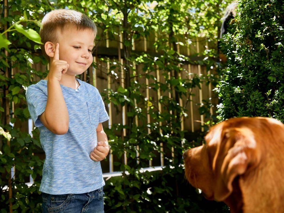 Pünktchen und Anton Hund
