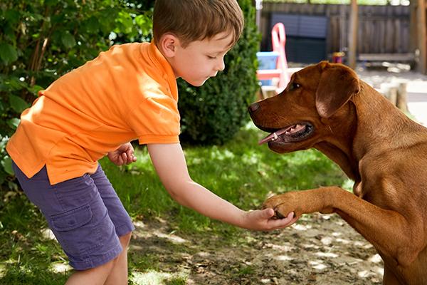 Puenktchen und Anton Hund